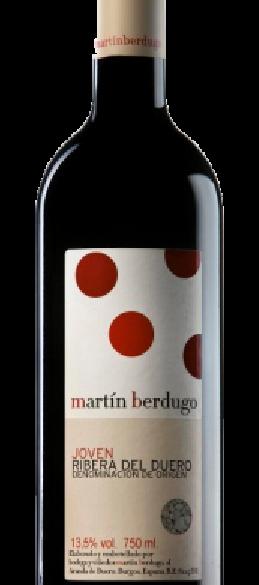 Martin Berdugo Joven